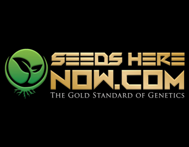 Cloning Of Marijuana Seeds Bypasses Federal Law | Seed Bank