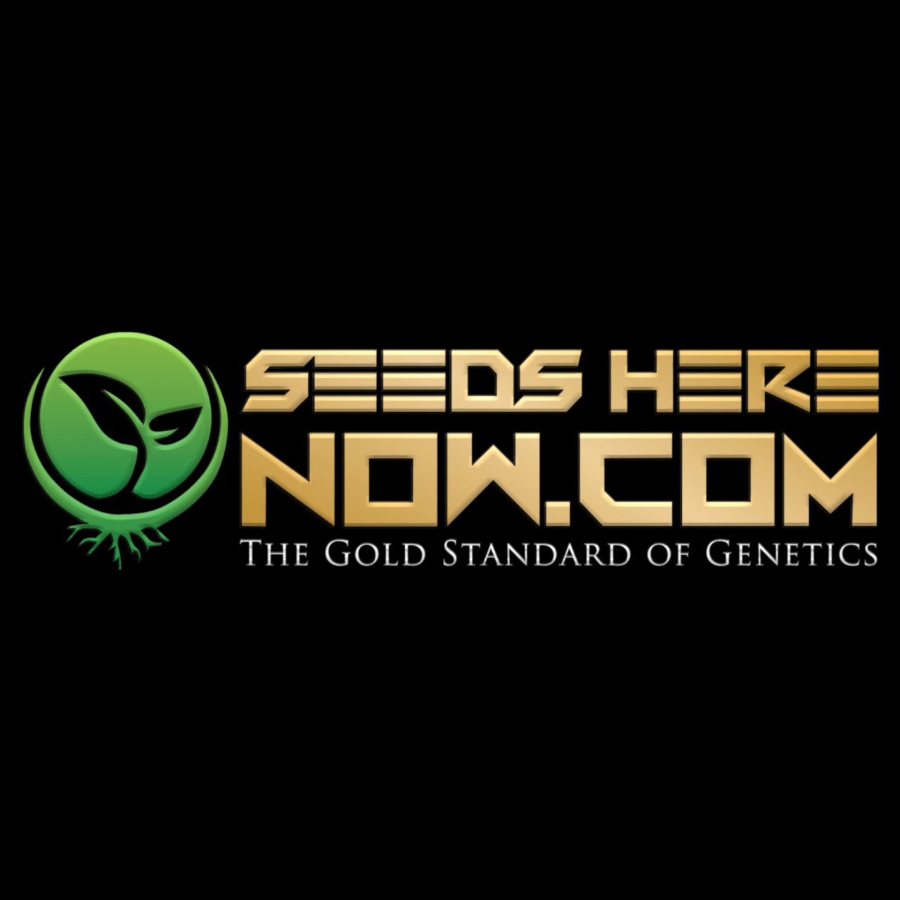 Seeds Here Now - Reviews | Seed Bank Magazine